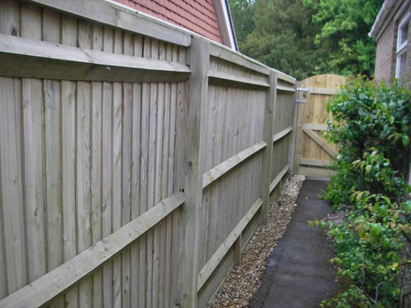 Rose Trellis Fence